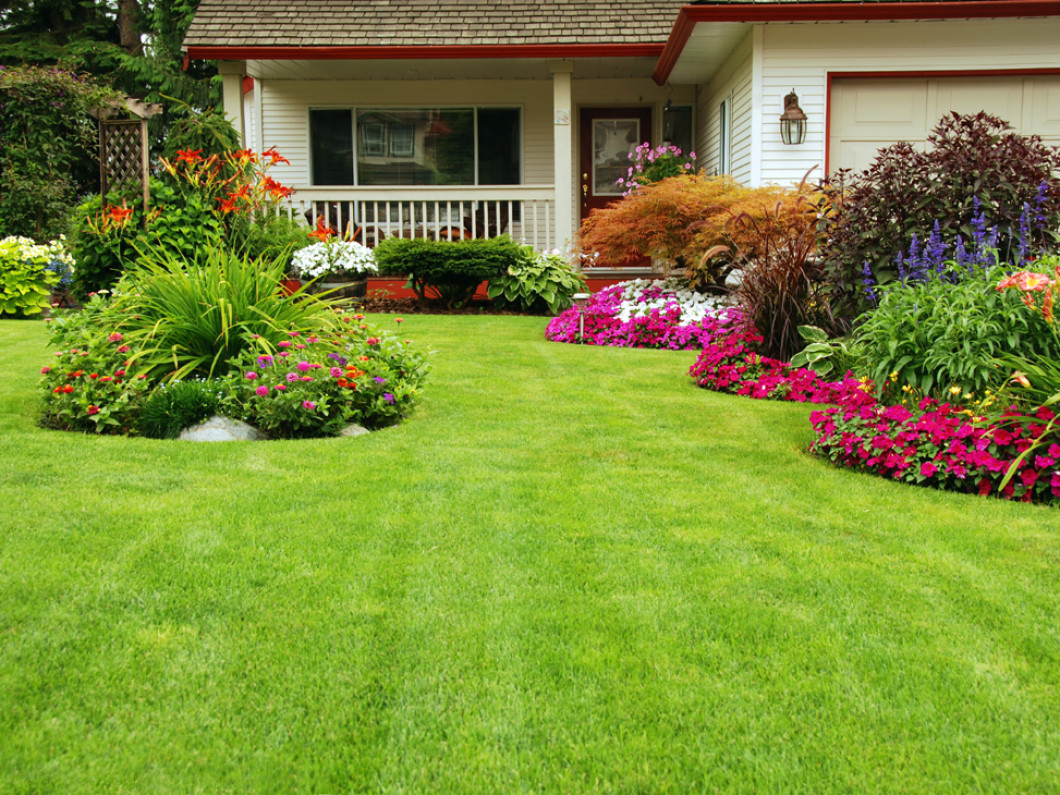 Enjoy a Greener Outdoors with A-1 Tree and Lawn, Inc.